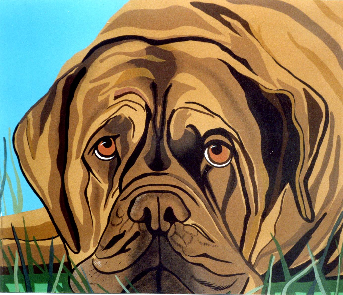 Ritratto cane Boxer